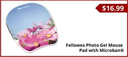 2_fellows